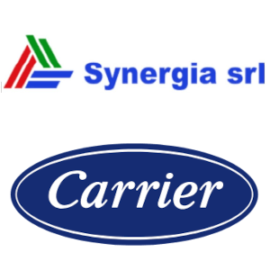 synergia carrier